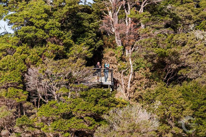 """""""很少有人会无动于衷_阿贝尔·塔斯曼国家公园""""的评论图片"""