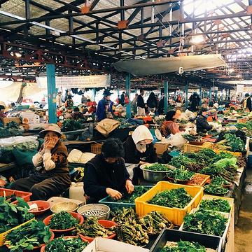 济州民俗五日市场