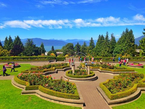 不列颠哥伦比亚大学植物园旅游景点攻略图