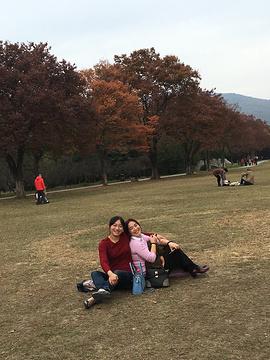 梅花山景区旅游景点攻略图