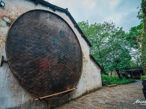 乌镇旅游景点图片