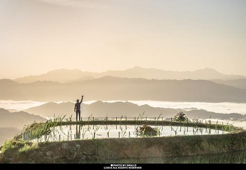 紫鹊界梯田旅游景点攻略图