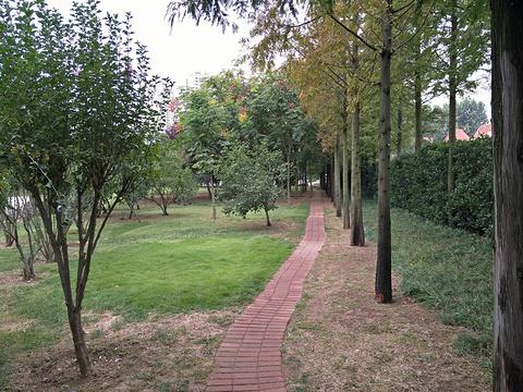 丁家河公园旅游景点图片