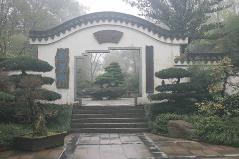南山植物园旅游景点攻略图