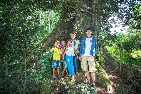勐海游览区旅游景点攻略图