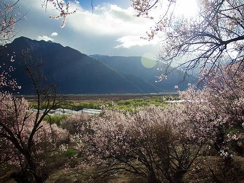 桃花沟风景区旅游景点图片