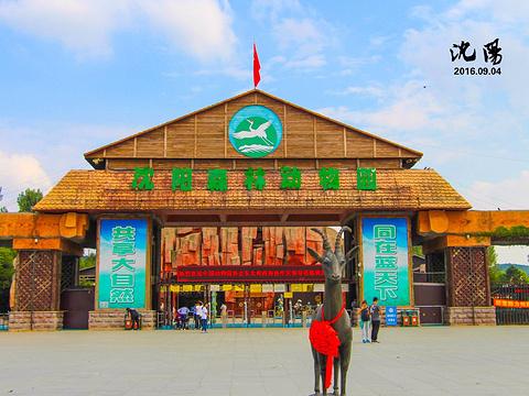 沈阳森林动物园旅游景点图片