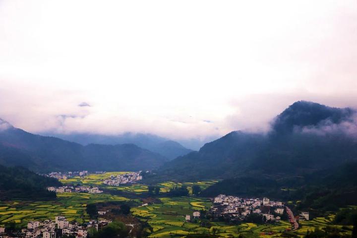 """""""【摄】对于景色的拍摄路线肯定是从山顶往下走着拍,最好早点去。来到婺源,很多人都把第一站放在江岭_江岭景区""""的评论图片"""
