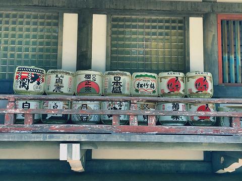 Toyokuni Shrine旅游景点图片