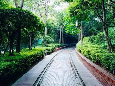 铁路文化公园旅游景点图片