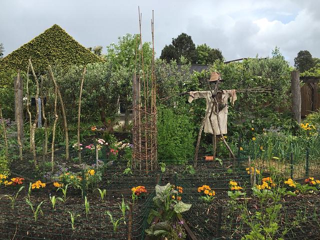 """""""汉密尔顿花园超级值得一去。一是免费,二是美,尤其适合凹造型,拍照片。_汉密尔顿花园""""的评论图片"""