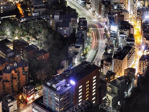 六本木之丘及中城旅游景点图片