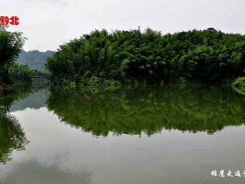 楠竹海旅游景点图片