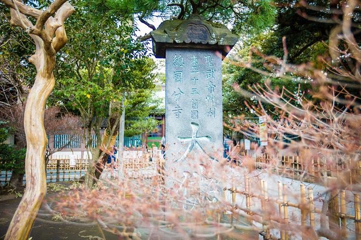"""""""镰仓大佛贵为日本三大佛像以及日本国宝,但是参观的费用只需200日元。镰仓大佛是一座青铜阿弥陀如来坐像_高德院""""的评论图片"""
