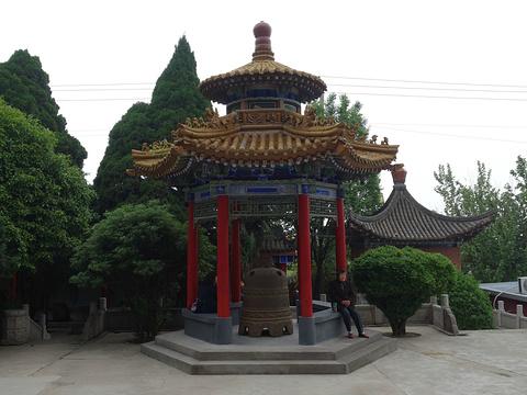 临潼博物馆旅游景点图片