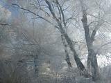 榆树旅游景点攻略图片