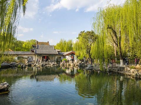 趵突泉公园旅游景点图片