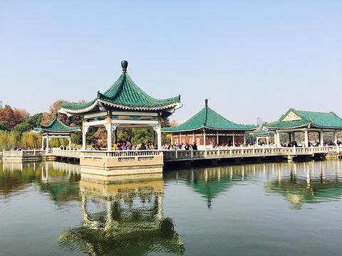 东湖的图片