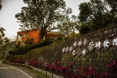 台北市铁观音包种茶研发推广中心旅游景点攻略图