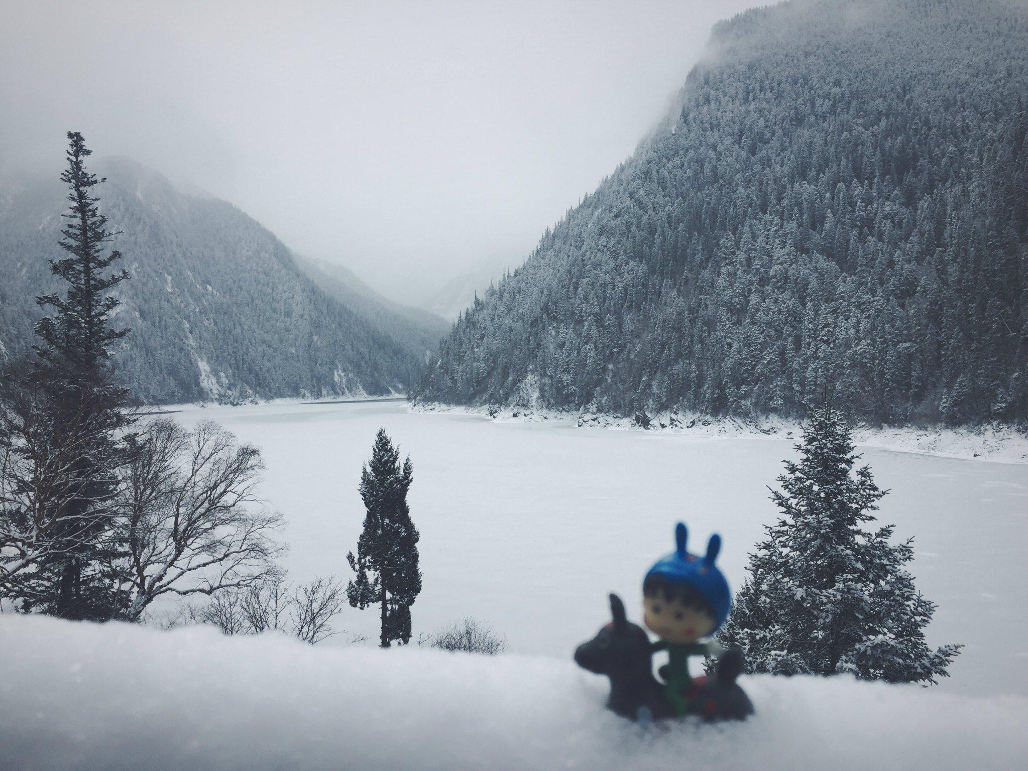 北方孩几在南方大雪地里撒欢——重庆、武隆、九寨沟、成都休闲晃荡13天~