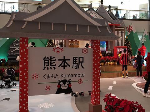 荷里活广场旅游景点图片