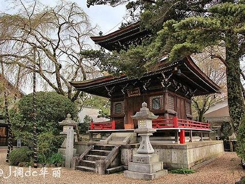吉野山旅游景点图片
