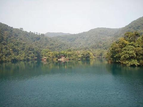 鼎湖山旅游景点图片