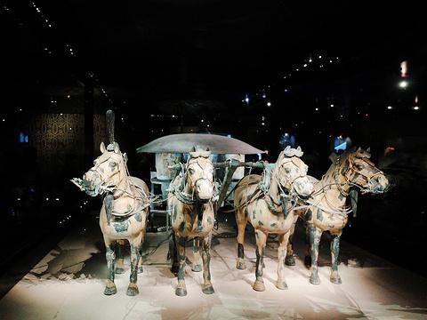 秦始皇兵马俑博物馆旅游景点图片