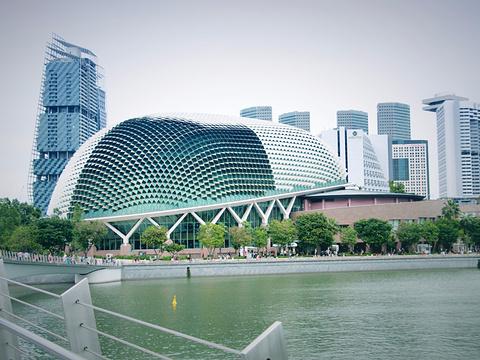 滨海艺术中心旅游景点图片