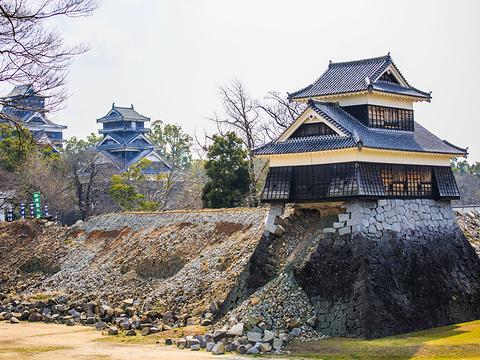 熊本城旅游景点图片