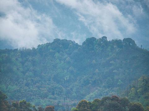 沐川竹海旅游景点图片