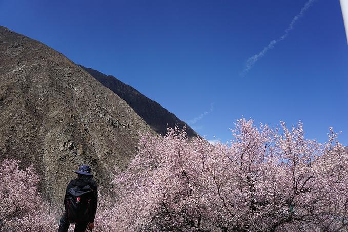 (九)2017-03-26离开拉萨-开往日喀则-参加珠峰三日游图片