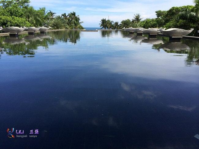 第三天亚龙湾图片