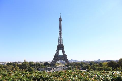 埃菲尔铁塔的图片