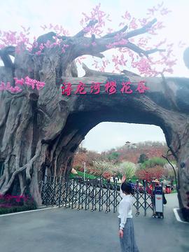 浔龙河生态艺术小镇旅游景点攻略图