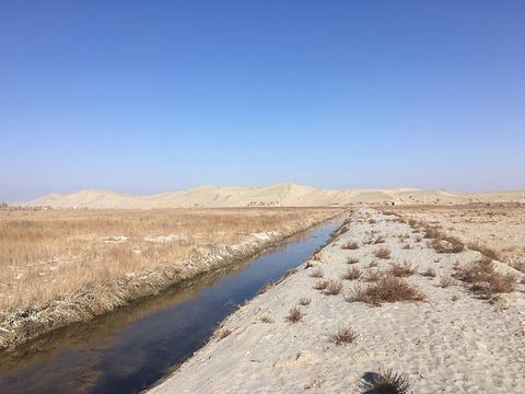 塔克拉玛干沙漠旅游景点图片