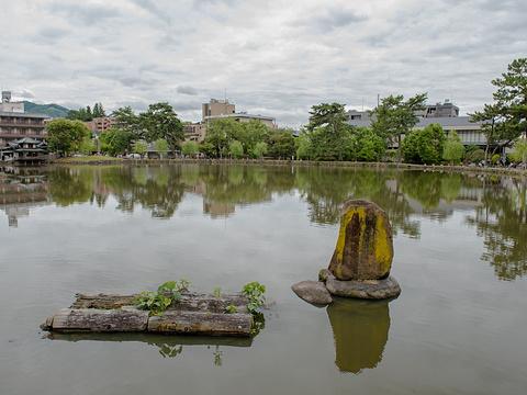 猿泽池旅游景点图片
