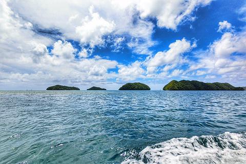 蓝色珊瑚礁