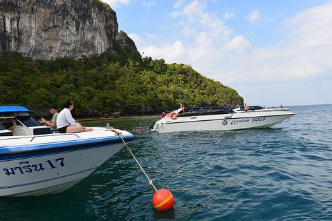 竹子岛的图片