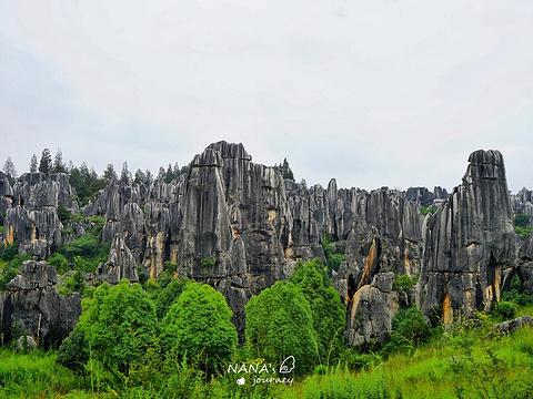 石林旅游景点图片