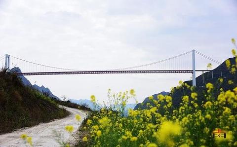 坝陵河大桥旅游景点攻略图