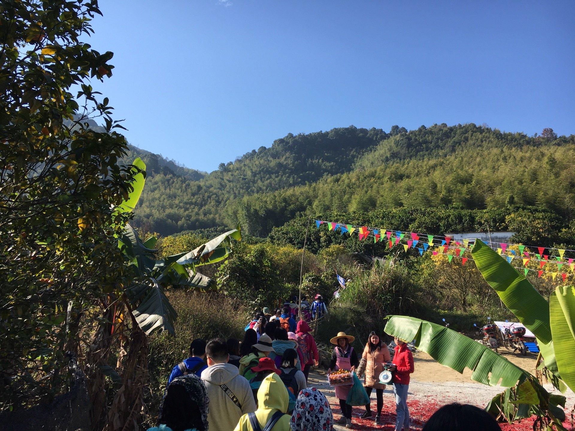 广州从化星溪线竹林徒步 攻略