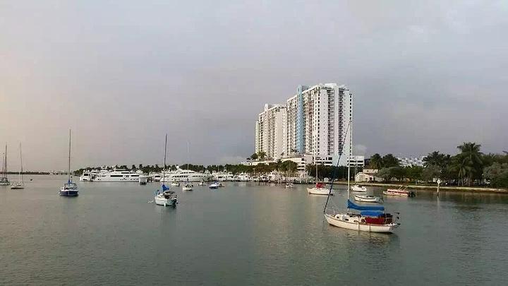 """""""不过照片质量有点渣哈哈,原图都找不到啦~迈阿密总的来说,确实是一个很可爱的城市,就是让人舒服_迈阿密海滩""""的评论图片"""