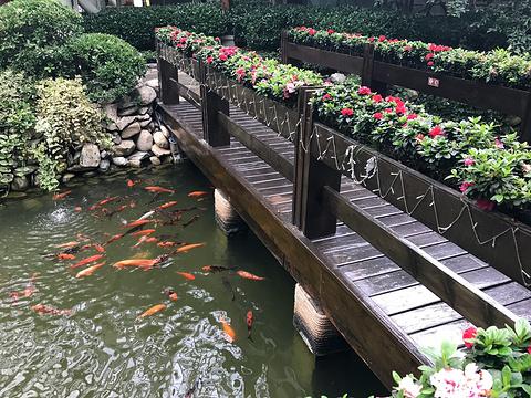 九寨天堂洲际大饭店