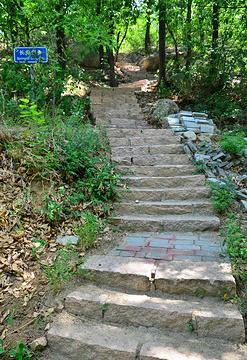 大杨山国家森林公园旅游景点攻略图