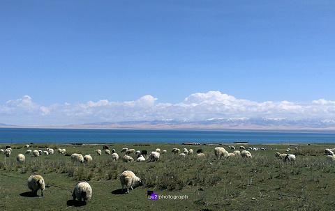青藏公路旅游景点攻略图