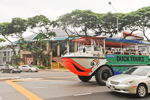 DUCKtours鸭子船