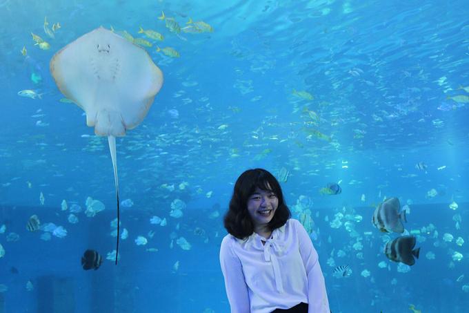 重庆汉海海洋公园图片