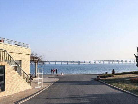 星海公园旅游景点图片