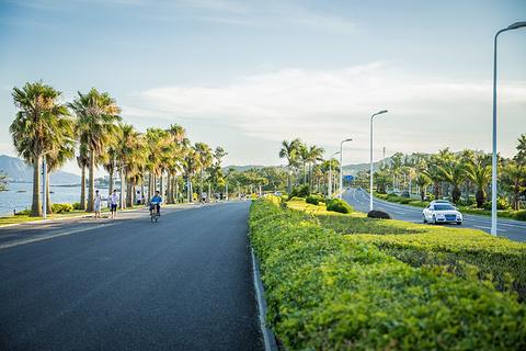 环岛路的图片